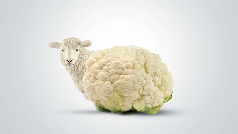 Vegan διατροφή & συνθετικό κρέας: Για  το περιβάλλον